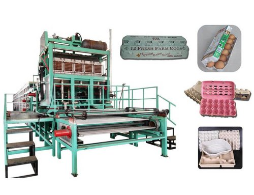 DY-3000 Paper Egg Tray Production Line