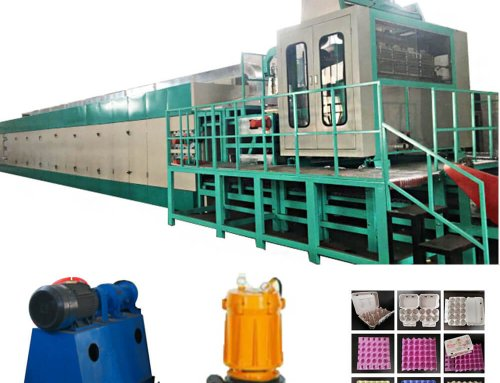 DY-1200 Paper Egg Tray Production Line